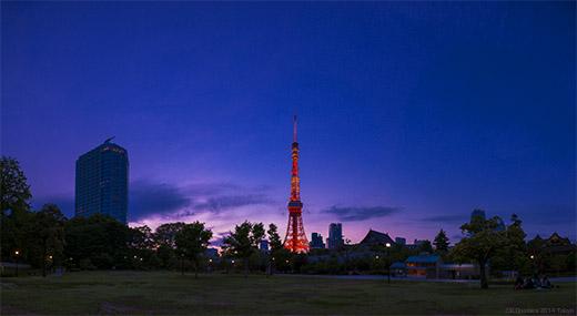 20140504東京タワーP02Cut2_52.jpg