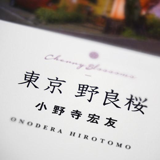 野良桜ティザー52.jpg
