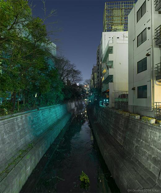 039_20140226狸橋上52.jpg